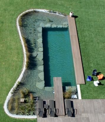 Natural, chemical free swimming pool - This shape could be done by recycling a storage container.