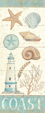 lighthouse and shells