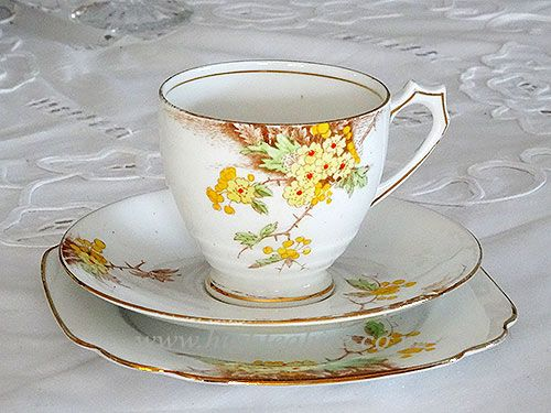 Hawthorn Standard English Bone China Pat No. 8473  3 Available for hire from High Tea Hire Napier NZ.