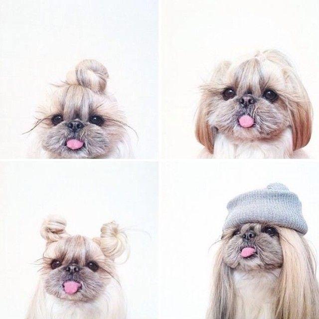 Looking for new hairstyles to sport this summer  Buscando nuevos peinados para este verano  À la recherche de nouvelles coiffures pour cet été