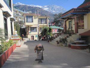 Dharamsala - Parlamento tibetano