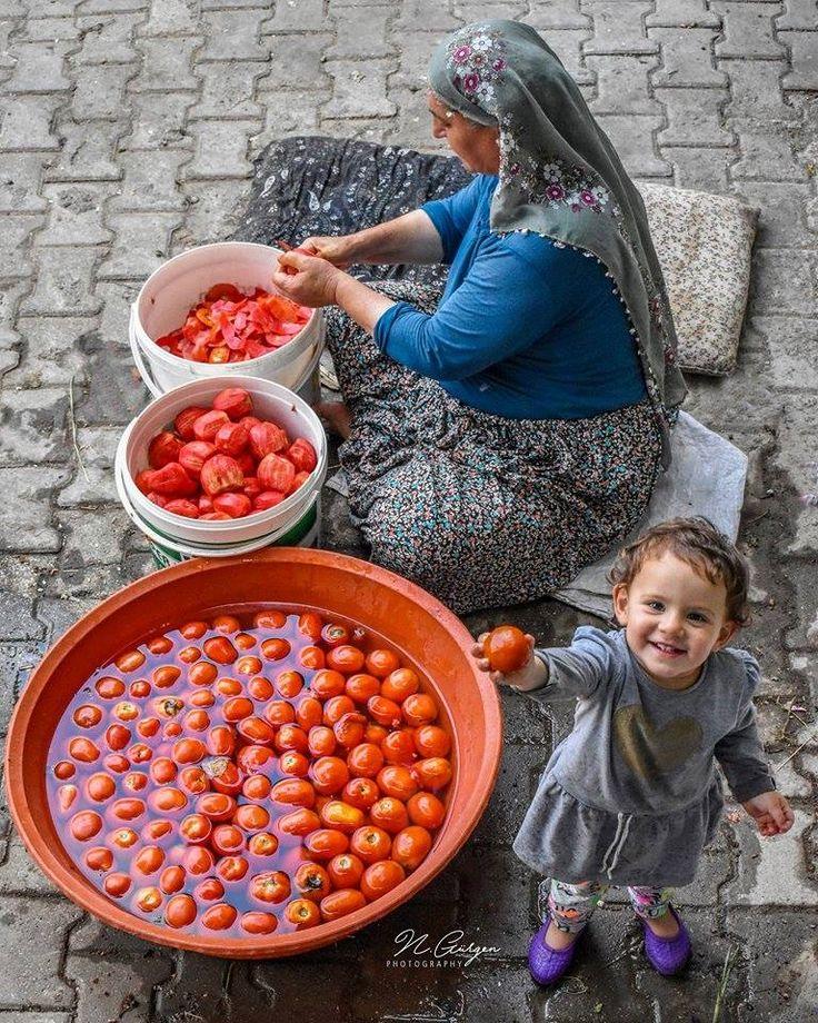 Anadolu'da kış hazırlıkları… Yer: Alacabal / Erbaa / Tokat Fotoğraf: Niyazi Gürgen