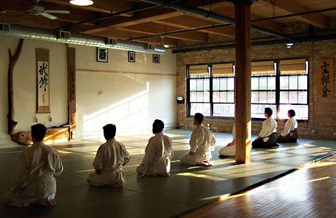 Aikido and Zen in Chicago: Shinjinkai 真心会, the calm before the storm...Biran.