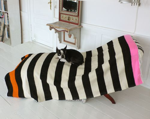 A handwoven wool-throw on a chaiselongue - with a dog.