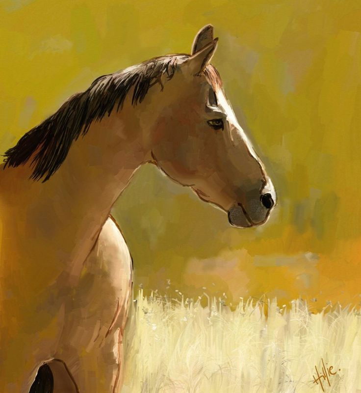 This horse was painted digitally by me in ArtRage from a photograph with permission (redbubble member).
