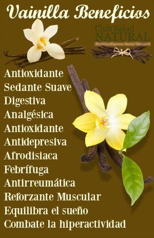 Tranquilízate con la Vainilla Beneficios de la Flor Negra Azteca - Club Salud Natural