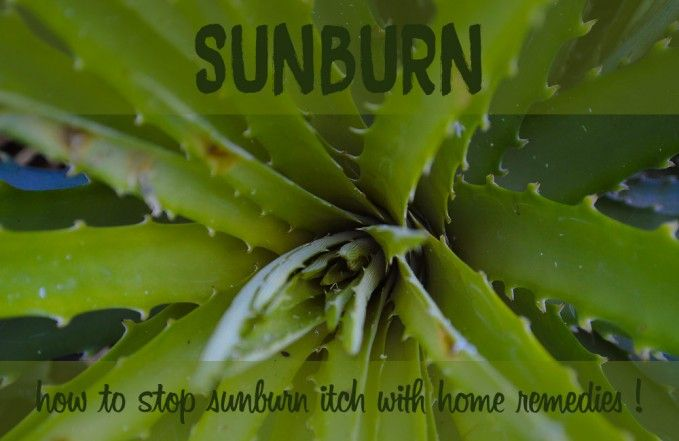 It is easy to underestimate the impact of the sun on your skin… Sometimes you end up with a sunburn when least expecting it. The intense itch of a healing sunburn can be unbearable. Fortunately, there are a few ways to stop sunburn itch quickly!