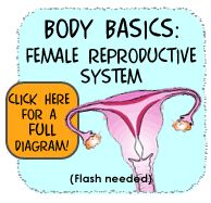 Body Basics: Female Reproductive System- good info for talking to your daughter about getting her period.