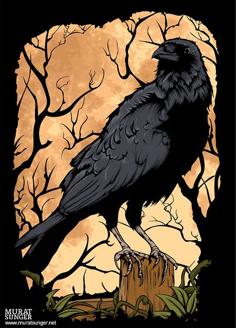 Poe-Like: Quothe the Raven - 'Nevermore!' I love Crows and Ravens - i find them to be fascinating birds.. Very intelligent and interesting in their social behavior.