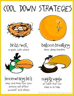 Cool down strategies to help the angry birds in the classroom.