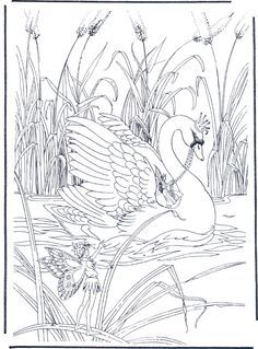 swan adult coloring pages patterns google search