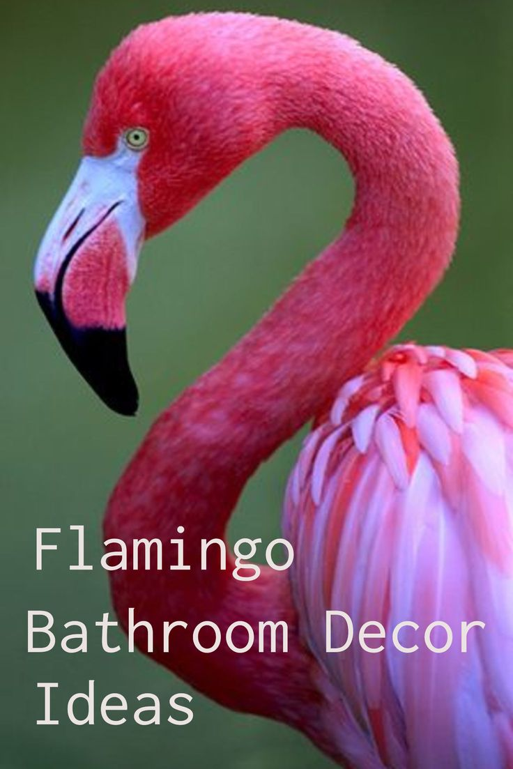 Beautiful pink flamingo bathroom decor ideas and shower curtains