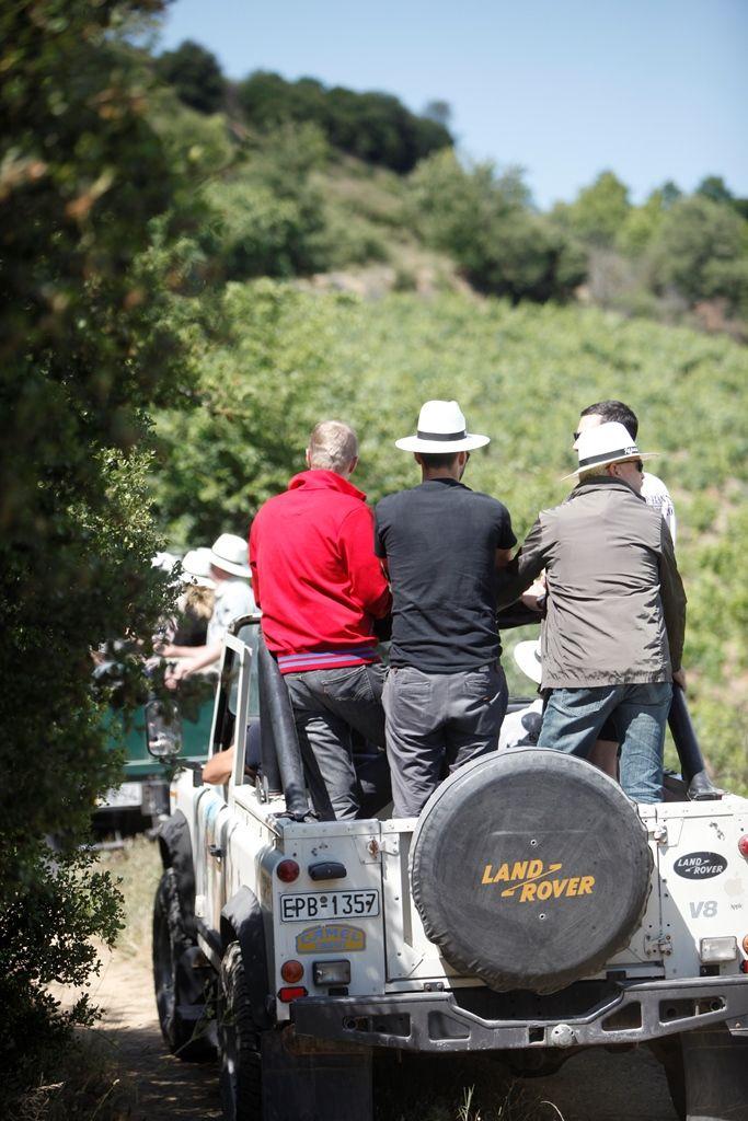 Never a dull moment #rapsani #tsantali #wine #adventure #epxerience #oenotourism