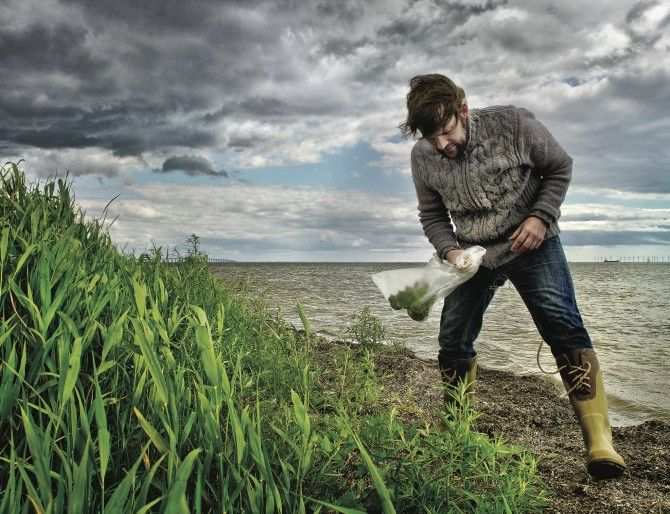 """René Redzepi gathers ingredients on Dragør Beach, near Copenhagen, for his restaurant, Noma, which has twice been named the best in the world. """"Foraging is treasure hunting,"""" he says."""