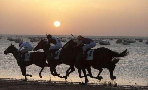 carrera de caballos sanlúcar 2015 | Déjate seducir por las carreras de caballos de Sanlúcar de Barrameda