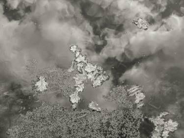 "Saatchi Art Artist johann kruger; Photography, ""Scattered Absurdity"" #art"