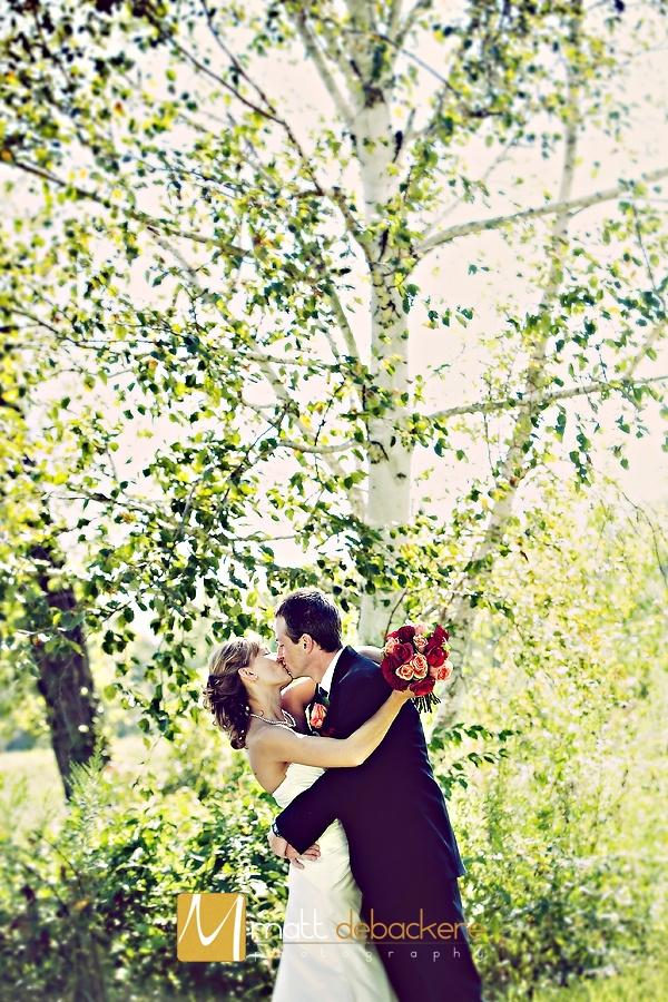 Wedding Photos - I love birch trees!
