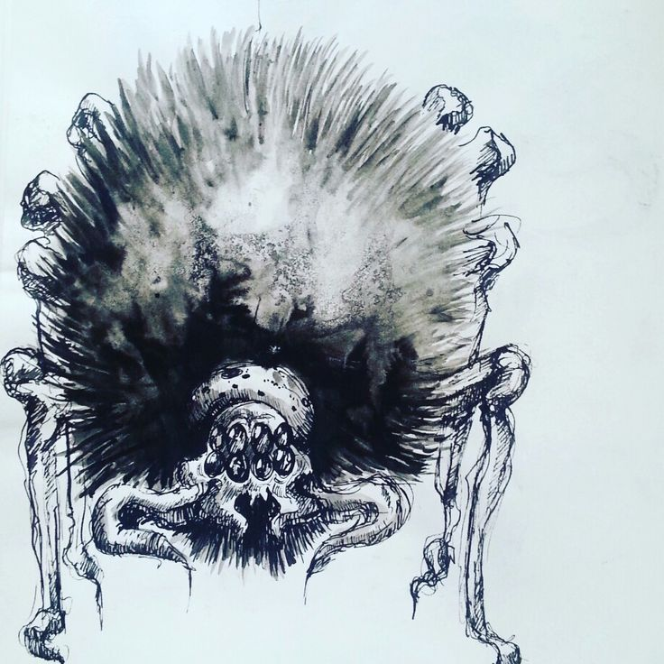 Acromantula sketch with ink by Magdalena Leszczyniak