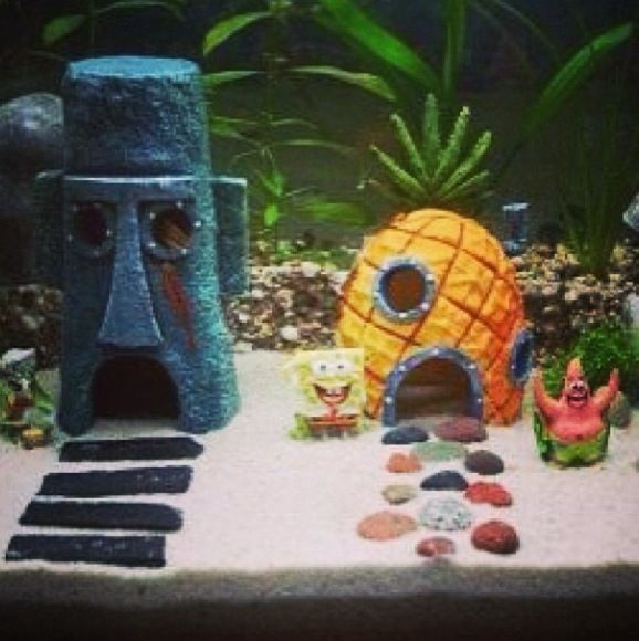 Spongebob fish tank fish tank pinterest spongebob for Spongebob fish tank accessories