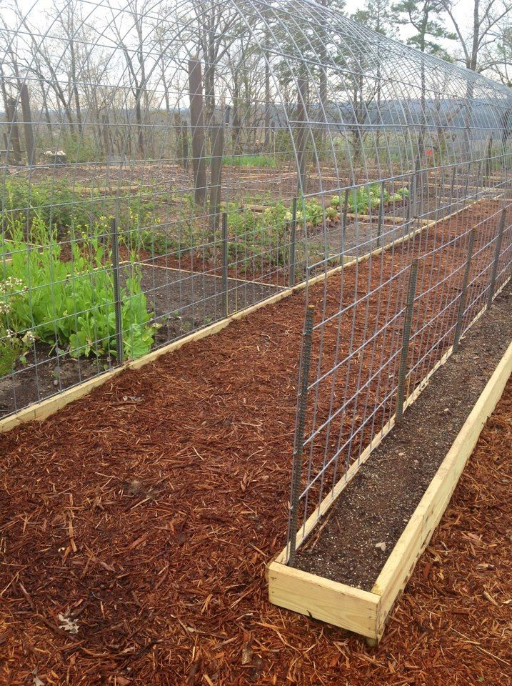 I like the slim raised bed for a single row of climbing veggies- maybe squash…