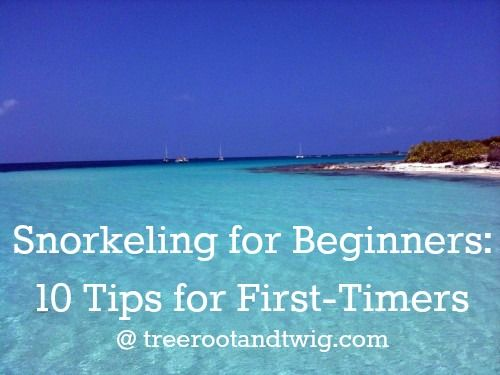 Snorkeling for Beginners - 10 Tips for First-Timers @ thesceniclife.com (formerly treerootandtwig . com)