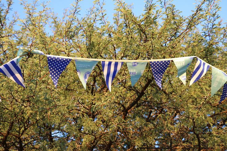 Teal Royal blue Bunting Teal Koningsblou Vlaggies