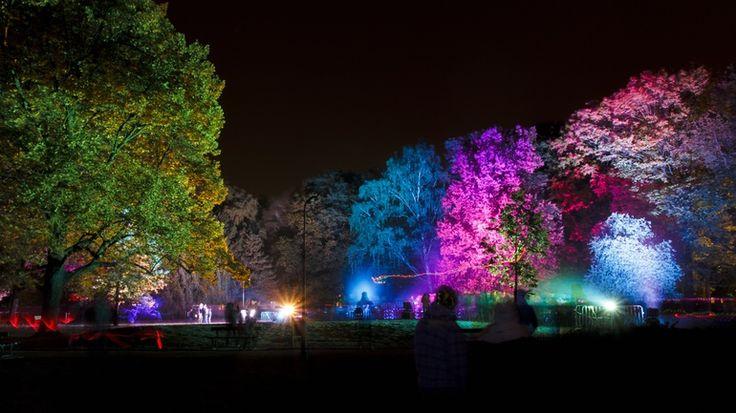 Night lights, colorful night! by Paweł Chrząszczewski on tookapic