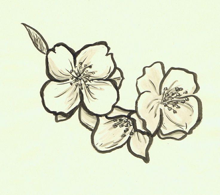 ... Jasmine Flower Tattoos on Pinterest | Flower tattoos Jasmine tattoo