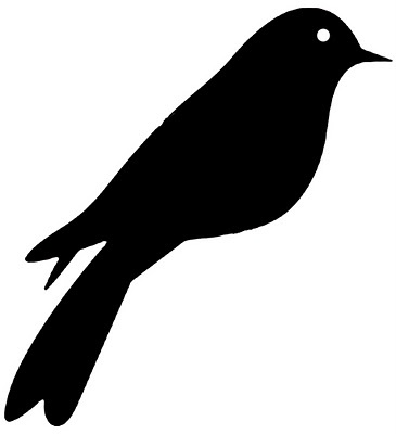 vinyl bird @ Vinyl Expressions 4 U