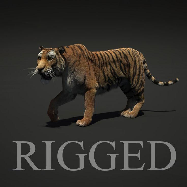 3D Tiger Fur Rigged Model - 3D Model