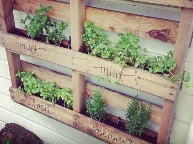 Tia Page palette mur vegetal
