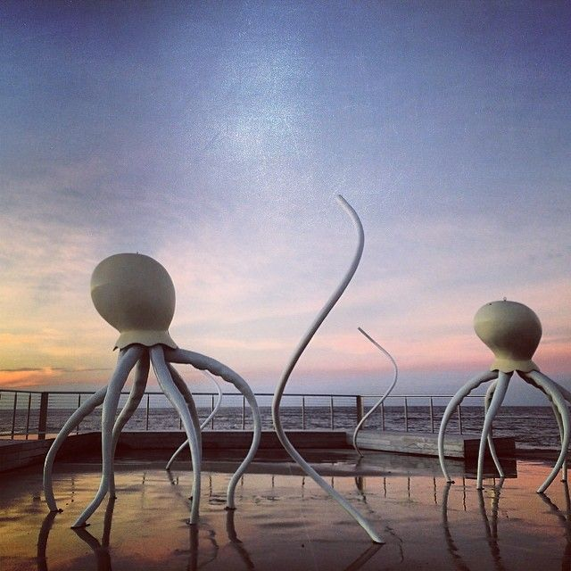 Sculptures on the Burnie foreshore. #burnie #tasmania #discovertasmania Image Credit: thunders7