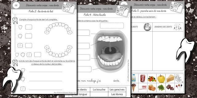 Fiches sur les dents http://laclassedelaurene.blogspot.fr/2013/01/les-dents.html