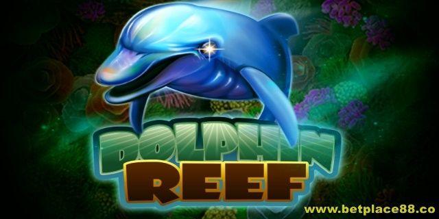 Ikan lumba-luma memang menggemaskan, maka dari itu slot game judi online Dolphin Reef sangat digemari oleh member atau player Joker123.net sejauh ini. Game ini tergolong game yang ringan, jadi tida…