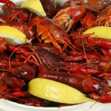 Crawfish Boil - A Louisiana favorite and the simplest recipe for any outdoor party. Just boil, season (Tony Chachere Creole Seasoning! YUM!), and serve. As easy as that! Also, boiled crawfish are excellent served with corn on the cob and potatoes.