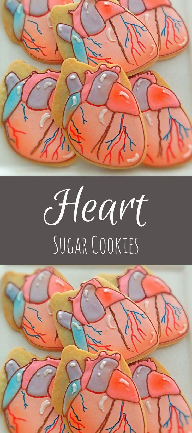 12 Anatomical Heart Shaped Sugar Cookies #affiliate