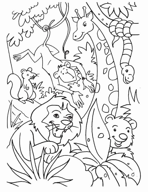 Pin By Mariahmooo On Pre School Fun In 2020 Animal Coloring Books Jungle Coloring Pages Animal Coloring Pages