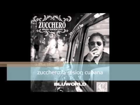 ▶ Zucchero-La Sesion Cubana-2012 (CON TORRENT DOWNLOAD) - YouTube