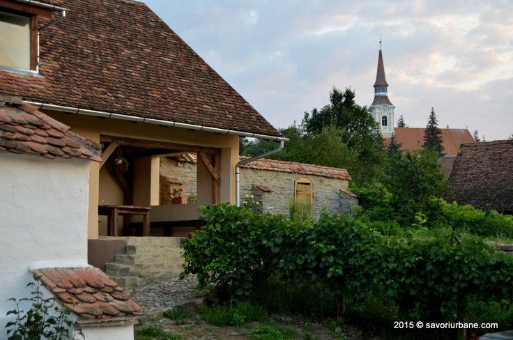 Vacanta foodie la Convivium Transilvania Crit Brasov