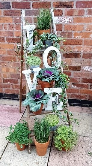 VINTAGE STEP LADDERS  dressed for an up coming wedding fair these love lettered and herb pot drenched vintage step ladders are sure to create a wow to any vintage styled wedding theme