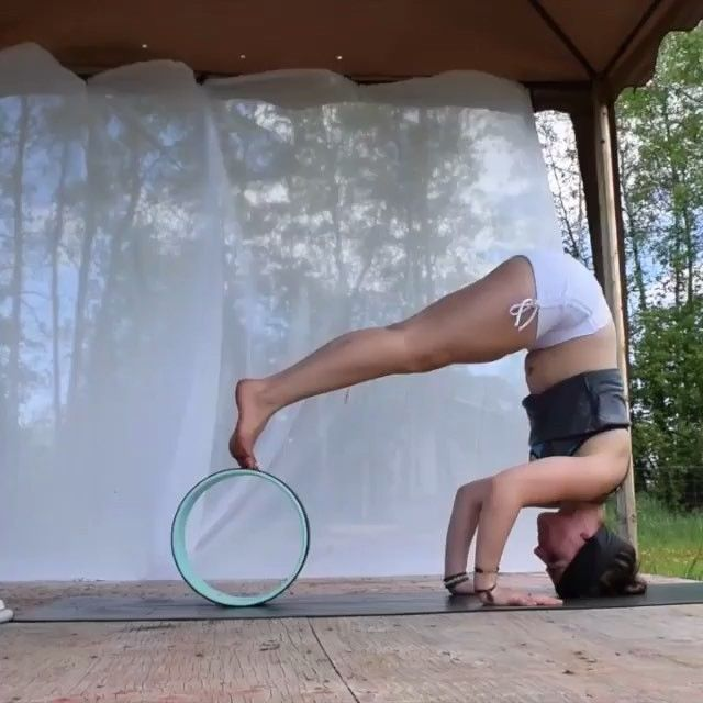 """Strength conditioning. #DharmaYogaWheel Check out our #DYW ambassador @wildyogagirl building some strength with her #Basic #YogaWheel Use her code """"wildyogagirl"""" for a discount on your next order."""