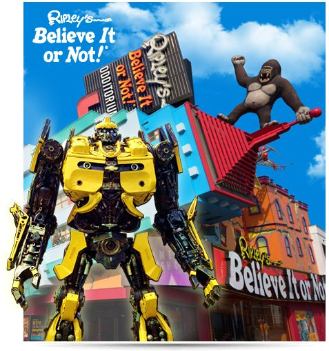 Ripley's Believe It or Not! Niagara Falls, Canada. Experience our 10,000 sq ft Odditorium and Over 800 Exhibits & Artifacts.