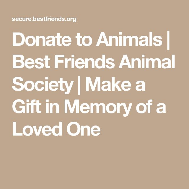 Donate to Animals | Best Friends Animal Society  |  Make a Gift in Memory of a Loved One