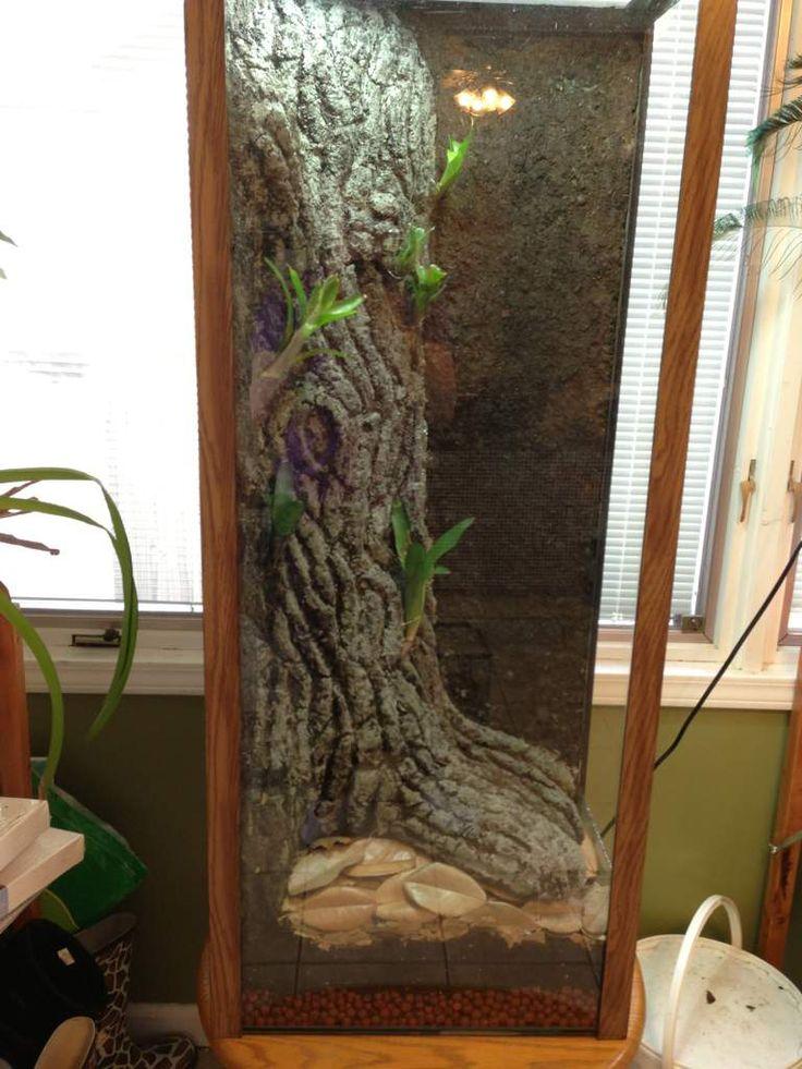 55 Gallon Verticle Arboreal Canopy | Gecko Terrarium ... 10 Gallon Vivarium