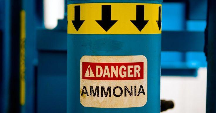 Cómo mezclar con seguridad el amoníaco para limpiar. A menudo usado en la limpieza doméstica, el amoníaco se puede usar para limpiar superficies de cristal, quitar manchas en una moqueta o limpiar encimeras. Desafortunadamente, tiene muchos peligros asociados. Por ejemplo, el Folleto de Material de Seguridad producido por la compañía W.D. Service establece que el amoníaco puede causar daños ...