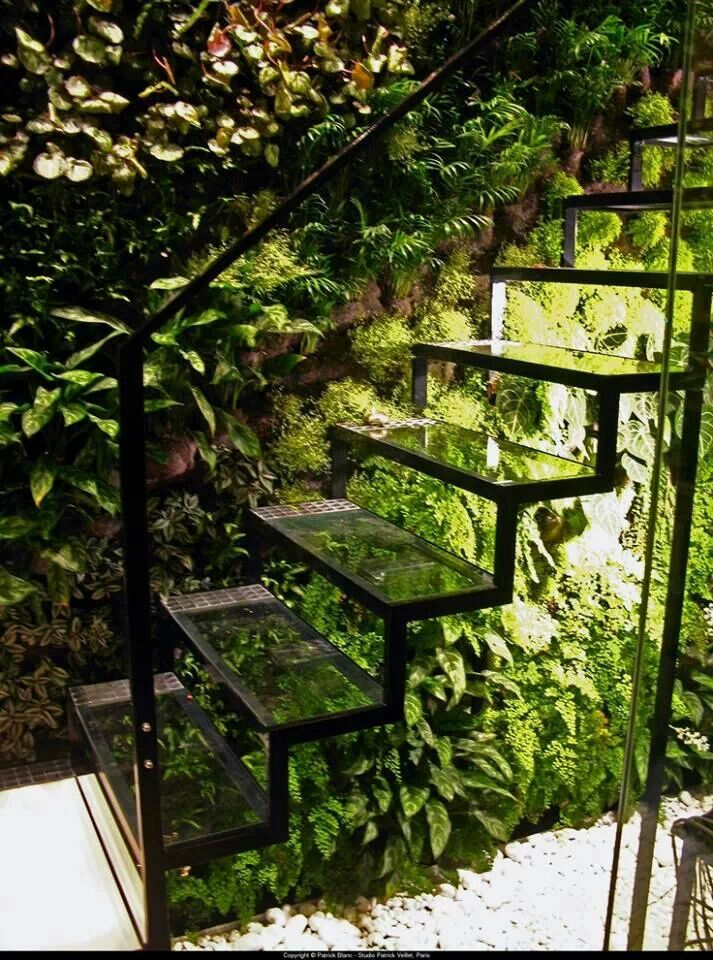 Cool garden staircase. See the planrs beneath. Not sure I'd like to climb them in the rain r hough.