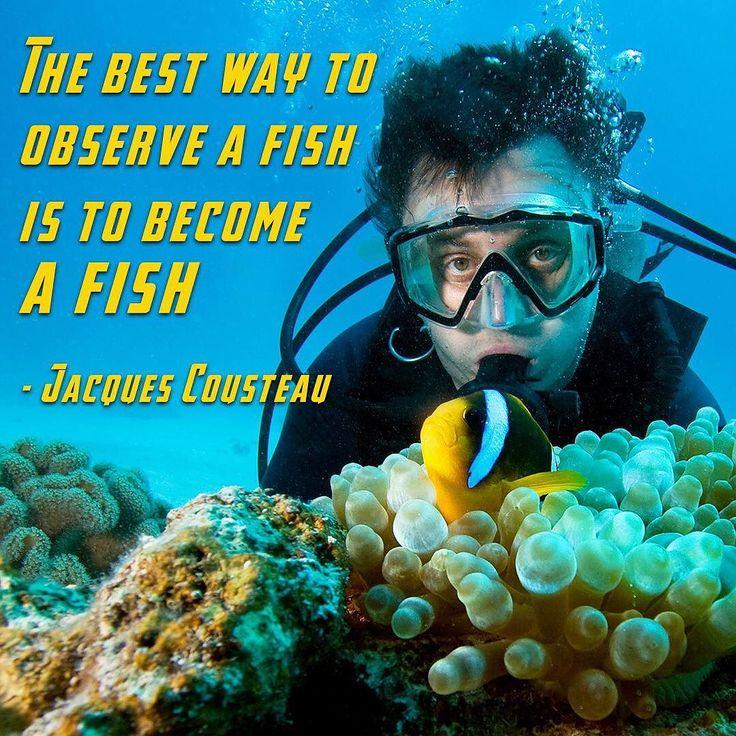 Jacques cousteau essay