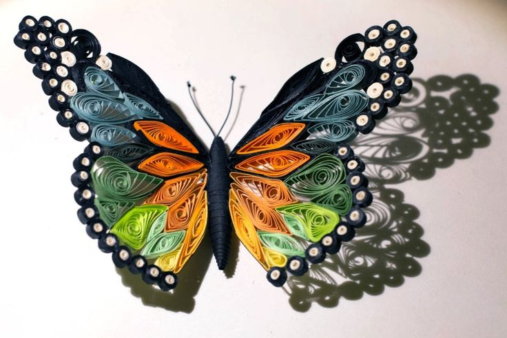 """Quilled butterfly – Papillon quilling – Mariposa de Papel 