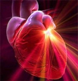 http://www.vivirmejor.com/images/stories/01-010/stents_cardiologia.jpg