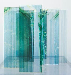 Brilliant art. Janet Laurence Artist Sydney | Janet Laurence Plants Eye View - GLOVER PRIZE WINNER 2013 | Archibald 2007 |